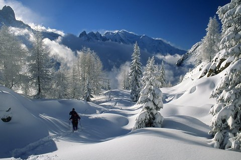 Chamonix Mont Blanc Resort Picture