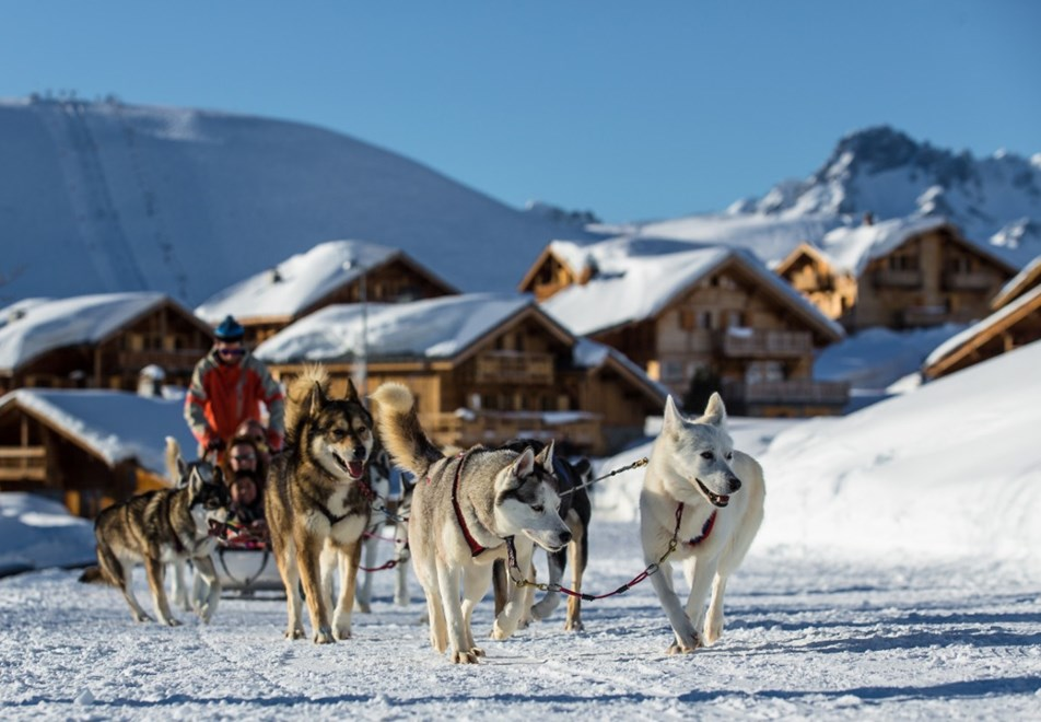 Alpe d'Huez Ski Resort (©Laurent-Salino) - Dog sledding